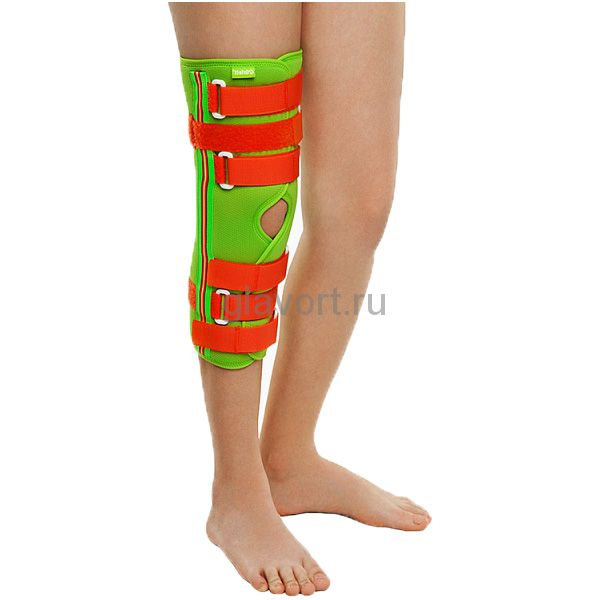плечевой локтевой суставы